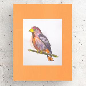 plakat z małpką, dekoracja do dziecięcego pokoju, plakat dla chłopca, plakat dla dziewczynki