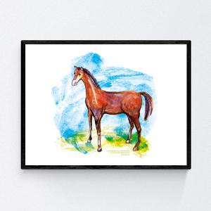 30x40 konik plakat dekoracyjny, koń obrazek do pokoju, źrebak grafika na ścianę