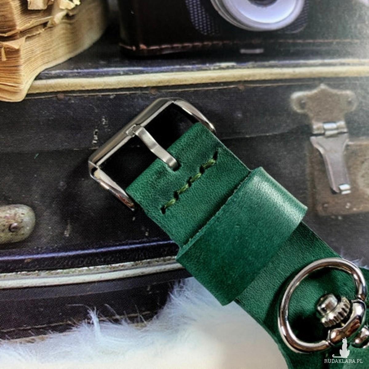 DC 041 - GREEN SPRING - Błękitny Obłęd