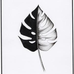 """Minimalistyczna grafika inspirowana naturą """"Liść"""""""