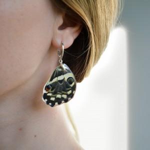 Srebrne kolczyki. Skrzydła tropikalnego motyla. Biżuteria z skrzydeł motyla