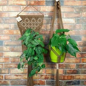 Zestaw Kwietnik makrama na ścianę + na kółku Kawa