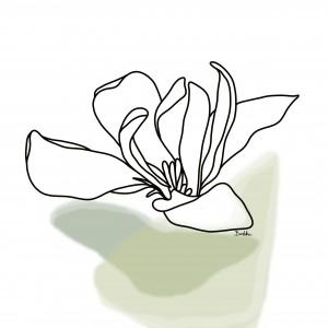 "Grafika ""Magnolia"""