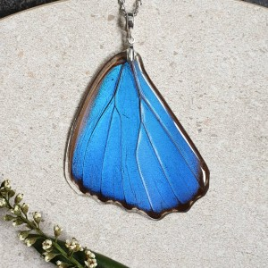 Wisiorek ze skrzydła motyla Morpho Didius