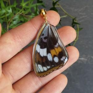 Wisiorek ze skrzydła prawdziwego motyla dwustronny 46 mm