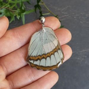 Wisiorek ze skrzydła prawdziwego motyla dwustronny 38 mm