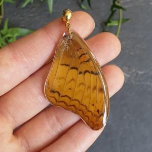 Wisiorek ze skrzydła prawdziwego motyla dwustronny 50 mm