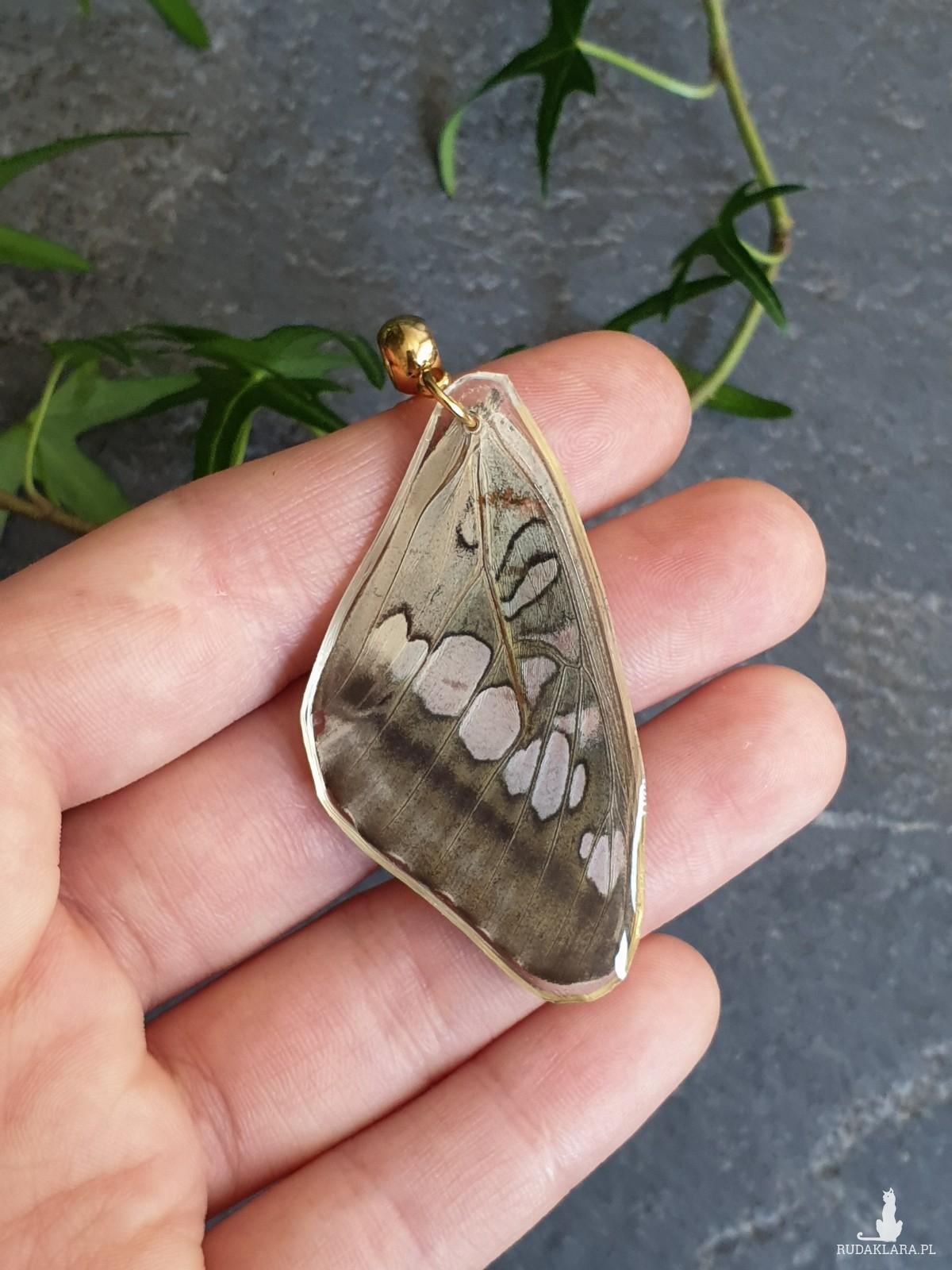 Wisiorek ze skrzydła prawdziwego motyla dwustronny 49 mm