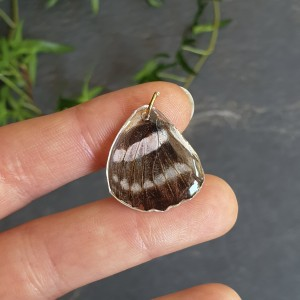 Wisiorek ze skrzydła prawdziwego motyla dwustronny 22 mm