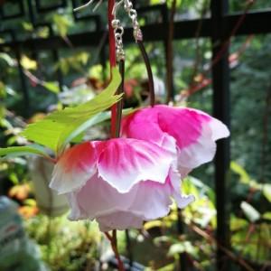 kolczyki długie lekkie kwiaty