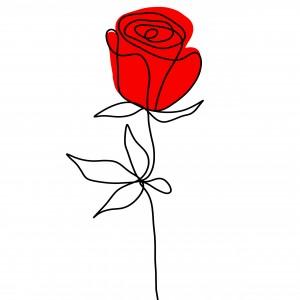 """""""Czerwona róża"""" grafika autorska"""